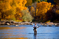 Fly Fishing The Animas